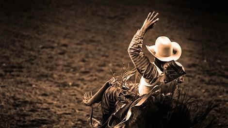 PBR Seattle Tickets | Professional Bull Riders!